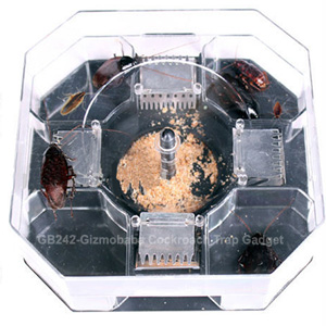 Cockroach Trap Gadget | Pest Control