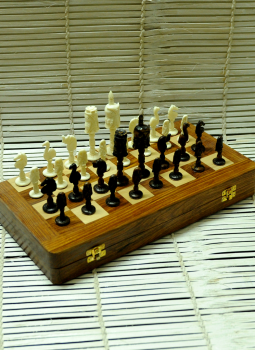 Painted wood,Indiacraft,Camelbone carved Chess set with Rosewood Board - Owls