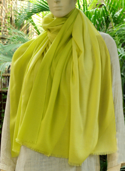 Warm Stoles & Mufflers,Indiacraft,Fine,Soft kashmiri Shaded Wool Stole -Lime Green to  Pale...