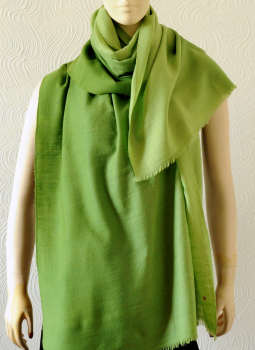 Warm Stoles & Mufflers,Indiacraft,Pure pashmina shaded Stole - Forest Green PPKSC