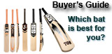 English Willow Cricket Bats Buyer's Guide