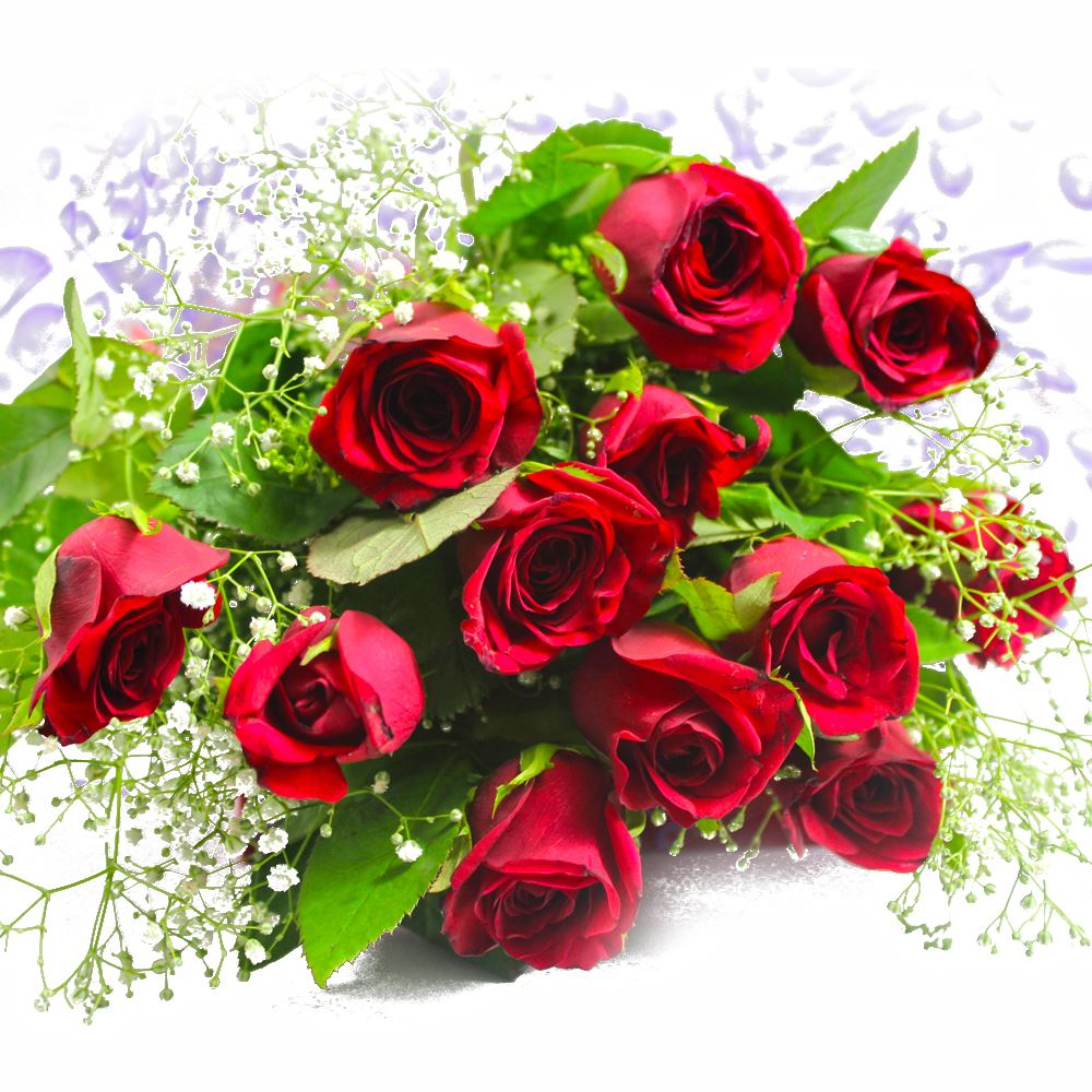 Send hand bunch of 12 red roses to india hand bunch of 12 red roses izmirmasajfo